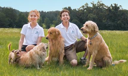 daytime dogs and friends, pet sitting, dog walking, overnight boarding, gainesville, florida